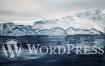WordPress网站SEO优化插件:DX-SEO