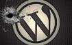 怎样提升wordpress网站安全性?