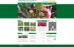 绿色火龙果苗火龙果种植产业基地网站源码dedecms模板织梦cms源码