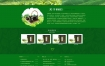 茶叶种植产业网站织梦dede模板源码[带手机版数据同步]