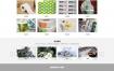 彩色包装印刷企业网站织梦dede模板源码[自适应手机版]