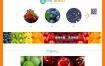 水果蔬菜批发企业网站织梦dede模板源码[自适应手机版]